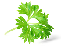 Immagine di Validare i form con javascript e Parsley.js